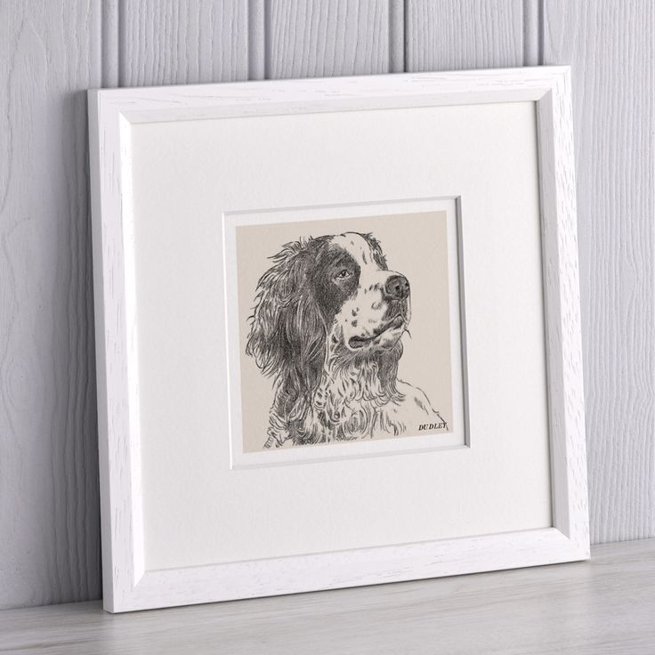 Bespoke Pet Portrait by Letterfest  dog portrait, cat portrait, custom animal portrait framed gift