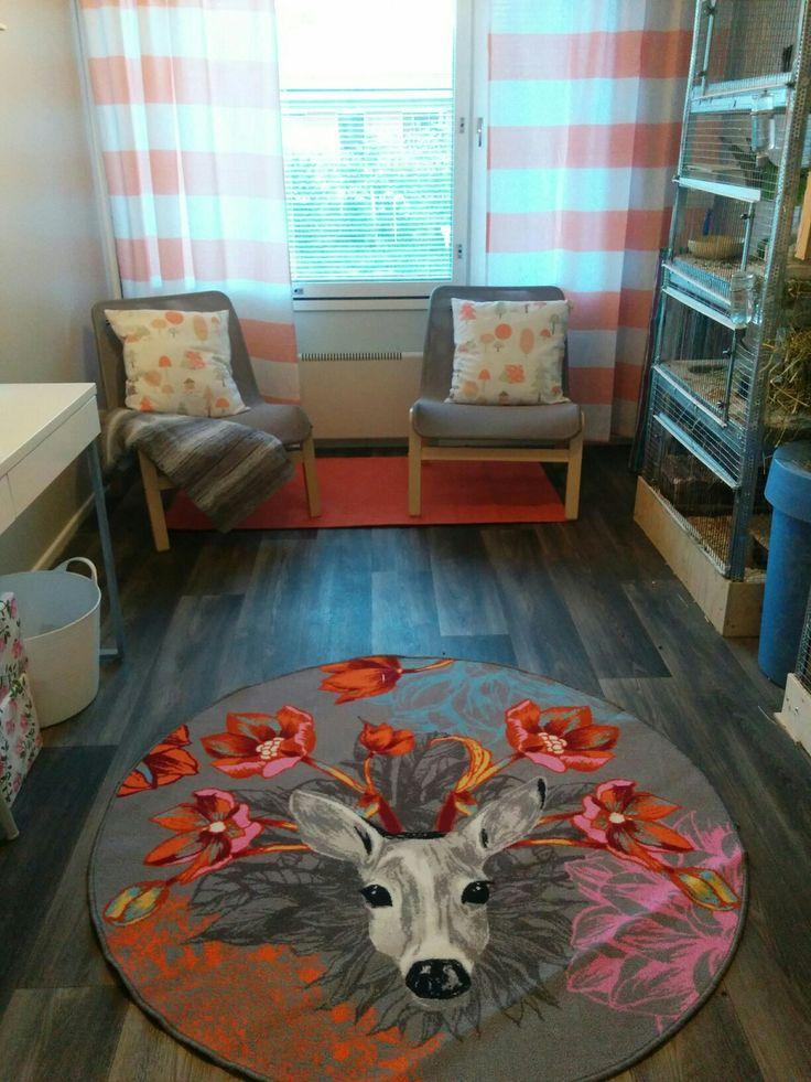 Chinchilla room <3 My home.
