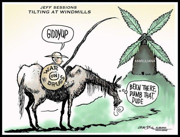 Jeff Sessions Tilting at Windmills...