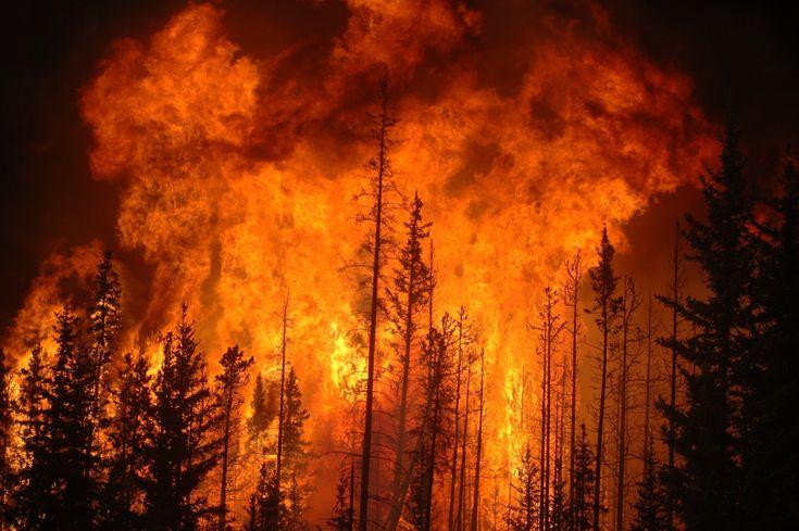 La Portada Canadá | Más de 100 Incendios forestales se extienden por todo Canadá.