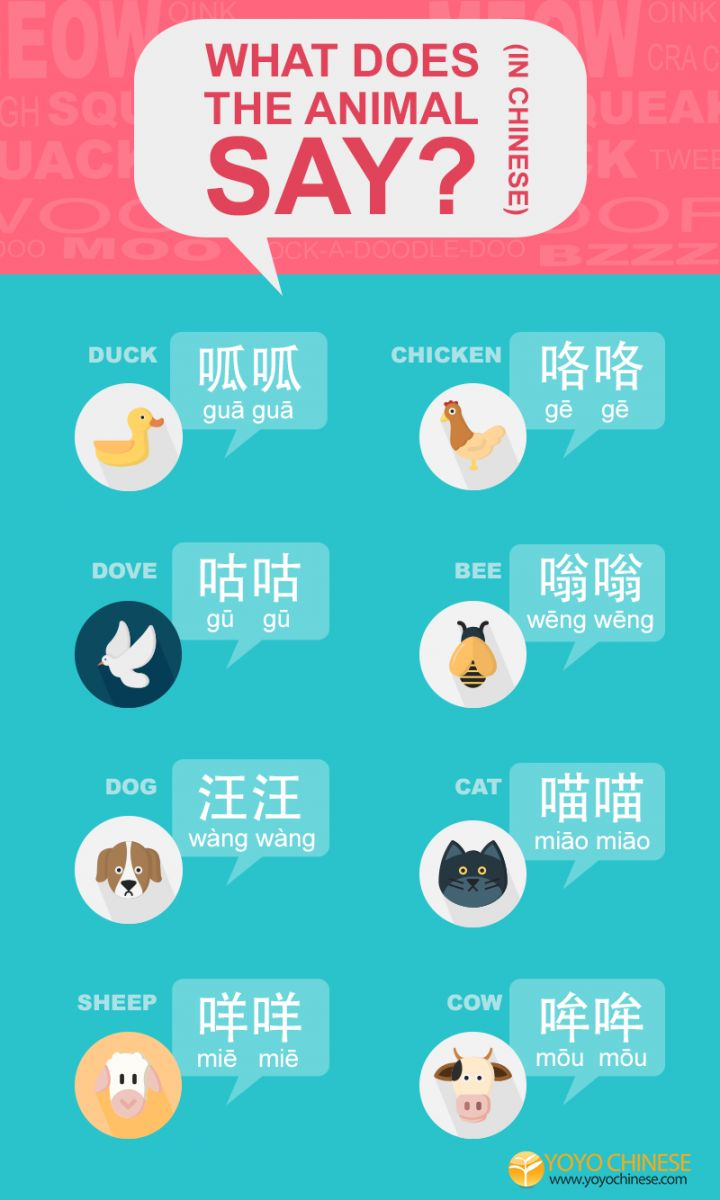 Speak fluent Mandarin duck today! :) Share this with your friends so that you can quack ((呱呱, guā guā) like a native and bark (汪汪, wàng wàng) like a local! Hear audio examples of each animal here too!
