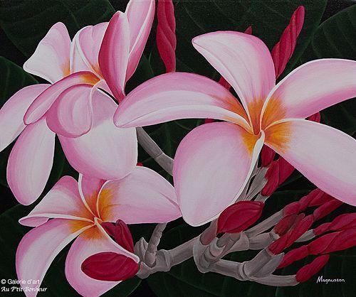 Dennis Magnusson, 'Plumeria Passion', 20'' x 24'' | Galerie d'art - Au P'tit Bonheur - Art Gallery