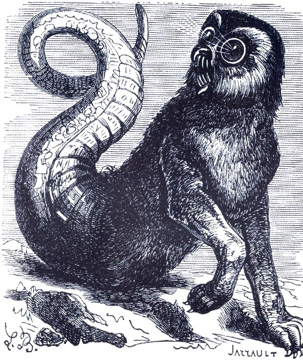 The Demon Amon as depicted in Collin de Plancy's Dictionnaire Infernal, 1863 edition.