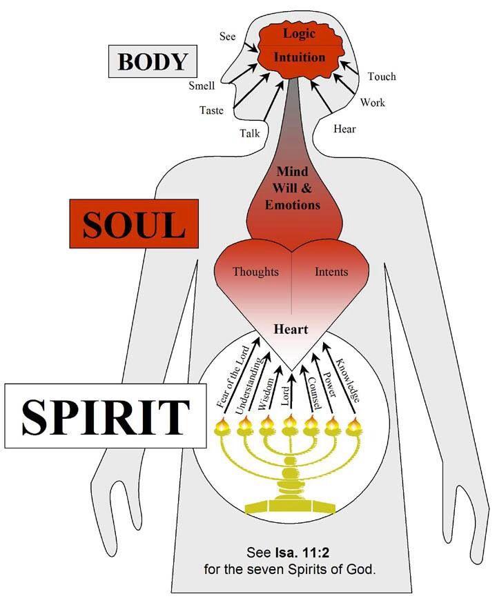 Spirit, Soul, Body Alignment; Isaiah 11:2