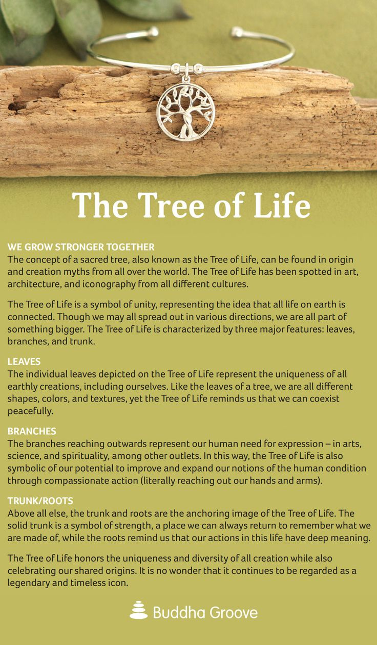 25 beautiful tree of life meaning ideas on pinterest for What is the meaning of the tree of life jewelry
