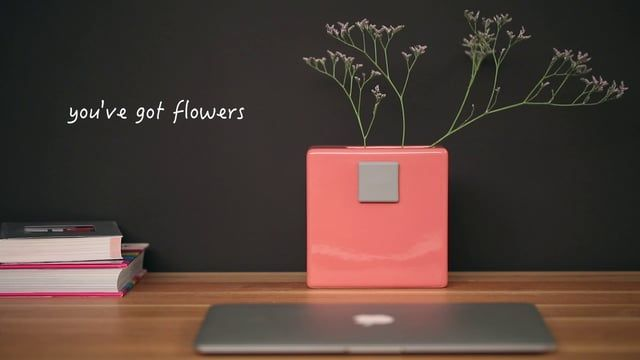 You've got flowers! translates the traditional mailbox into a flower vase where you can receive flowers instead of letters. It aims to challenge the way people communicate their messages, ideas and feelings in the modern world. Today communication is more often taking place in the online through e-mails or social media and personal letters are less common than in the past. Also, the traditional mailbox has been replaced with the virtual Inbox.