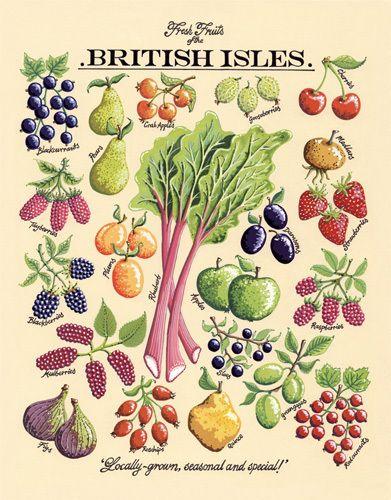 Fresh Fruits Art Print by Kelly Hall Easyart.com