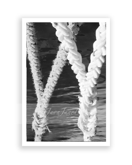 Western Alphabet Photography Letters