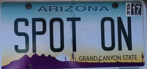 Arizona vanity license plate SPOT ON