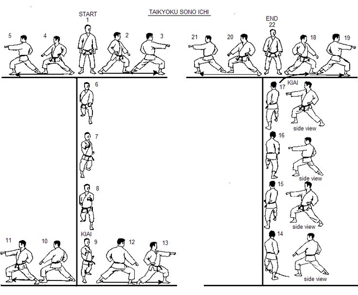 The Taikyoku kata were developed by Yoshitaka Funakoshi and introduced by Gichin Funakoshi as a way to simplify the principles of the already simplified Pinan/Heian series. Description from quazoo.com. I searched for this on bing.com/images