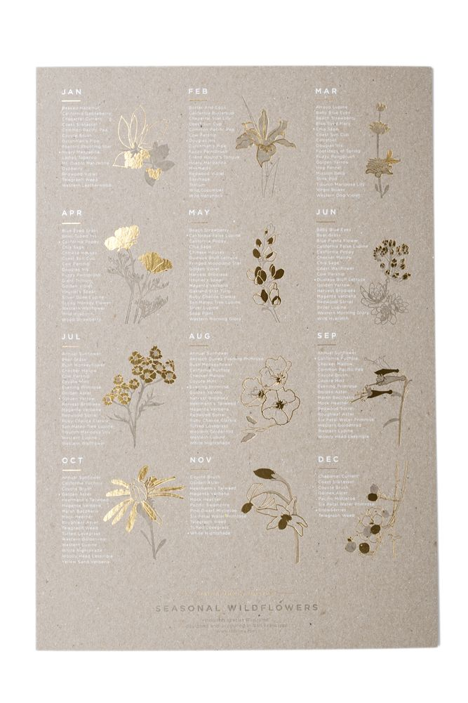 This seasonal wildflower poster would make the perfect gift for any garden enthusiast.