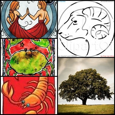 An idea I have for a great tattoo. My sun sign: Gemini, My moon sign: Cancer, my rising sign: Scorpio, my Chinese sign: the goat, my Celtic sign: the oak tree. I want all of this(not these images in particular, just an idea) in one tattoo.