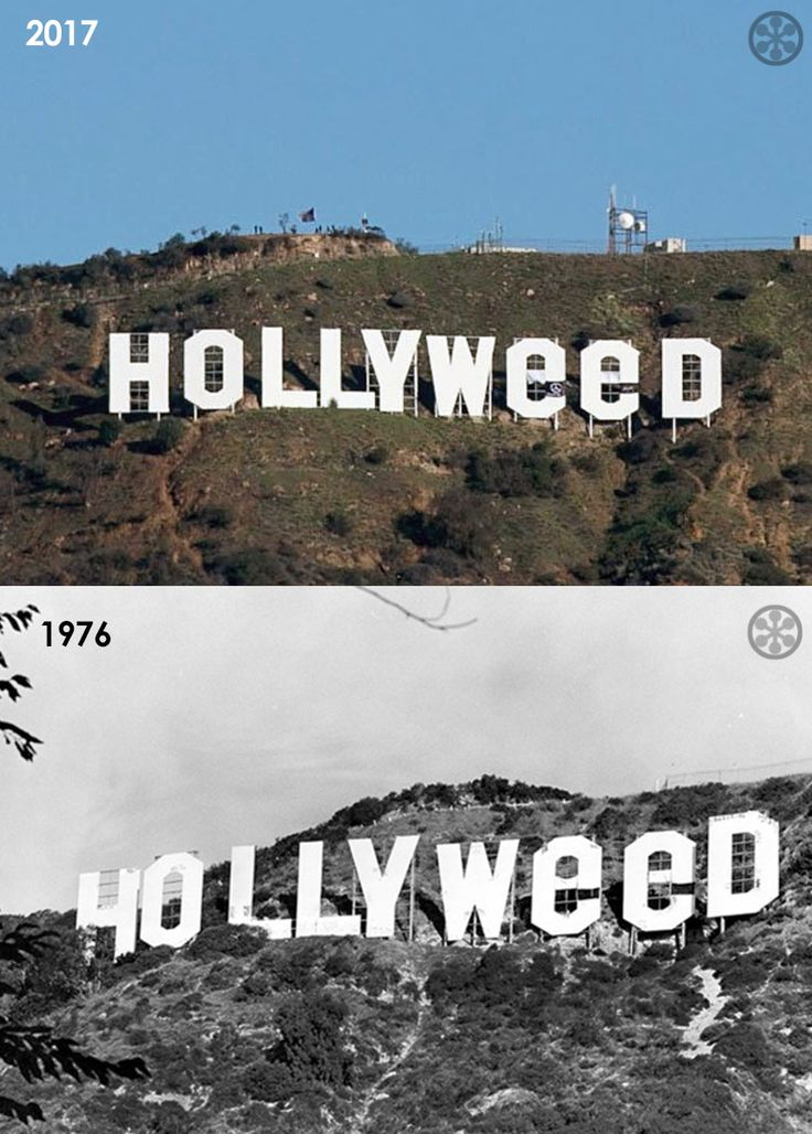 "Jan.1, 2017 - the Hollywood sign was altered by pranksters to read HOLLYWEED as a New Year's stunt. On Jan 1, 1976, a Cal State Northridge art student, Danny Finegood, scaled the mountain in darkness with a friend. Together they hung huge pieces of fabric over the letters to spell out ""HOLLYWEED,"" in celebration of relaxed marijuana laws, for a class project. He got an A grade."