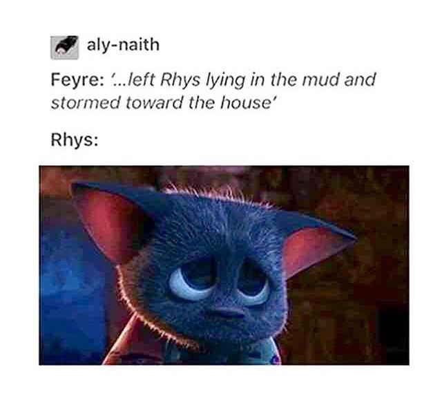 awwww, poor poor Rhysand, I mean, he was dying and Feyre left him alone but THANKS god (Sarah) he didn't  -A Court of mist and fury