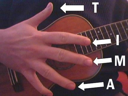 Beginner fingerpicking on ukulele