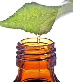, L'olio di tea tree è un olio derivato dallaMelaleuca alternifolia, originaria dell'Australia. È da sempre utilizzato per il trattamento delle infezioni