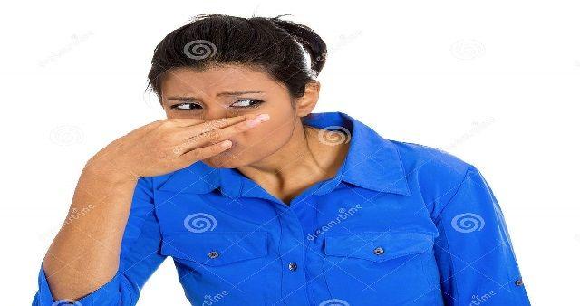 Come fare per profumare gli ambienti domestici con rimedi naturali. Profumare la nostra casa, eliminando i cattivi odori che talvolta ristagnano...