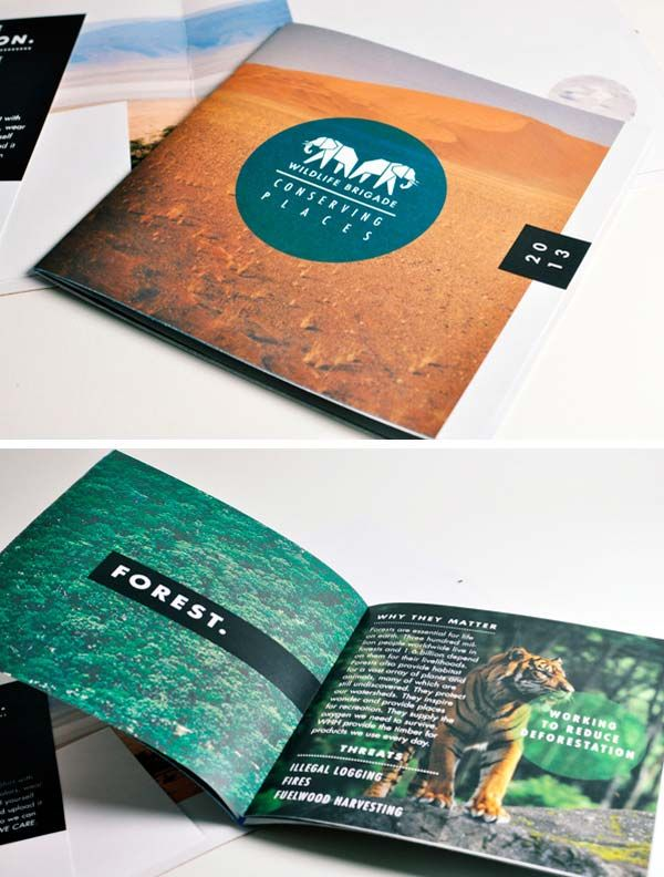 37 best brochures images on Pinterest | Editorial design, Graph ...