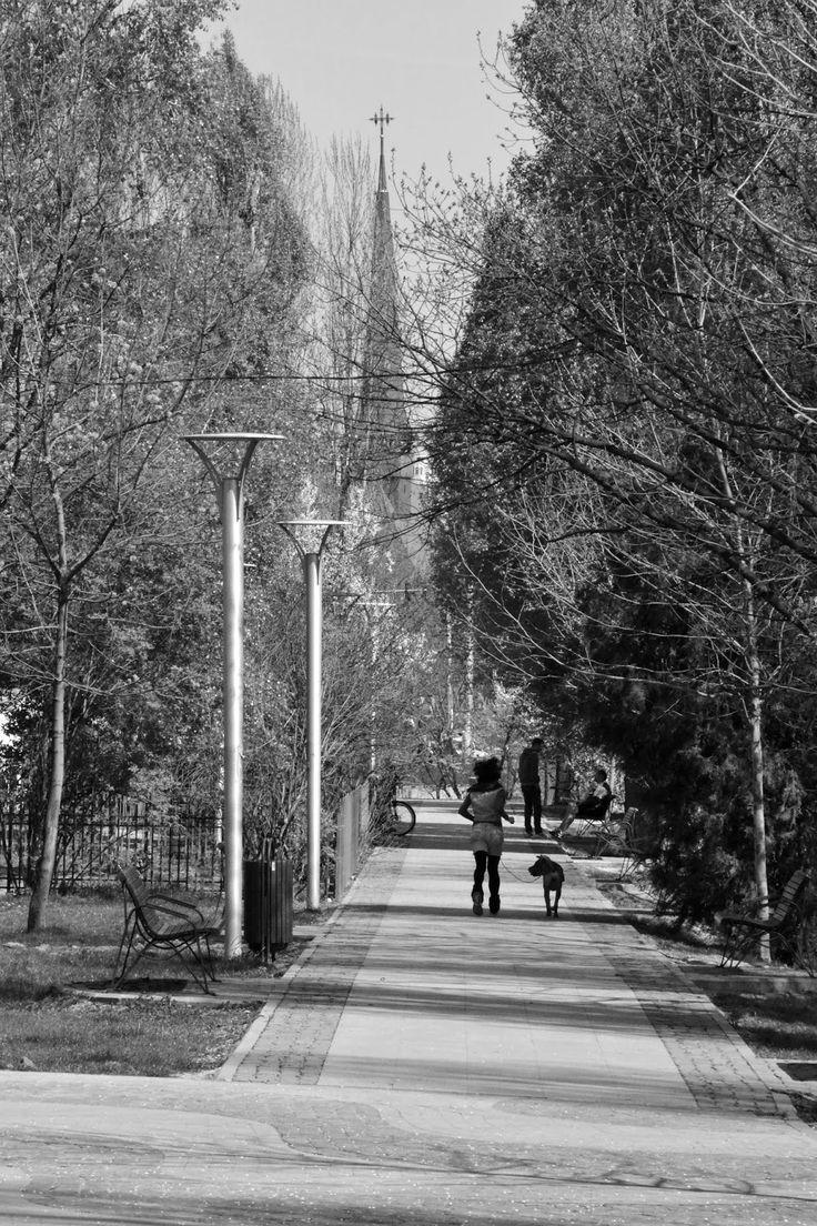 Charming Bucharest: B&W spring | Titan Park