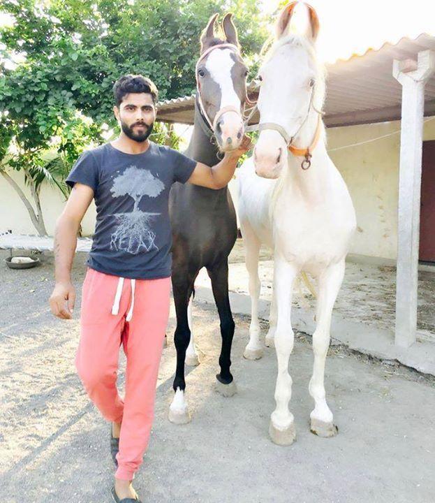 Ravindra Jadeja with his horse - http://ift.tt/1ZZ3e4d