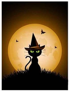 Witch cat!