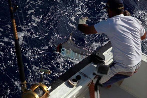 History Fishing in Mauritius! https://m.facebook.com/pecheauxgros.ilemaurice