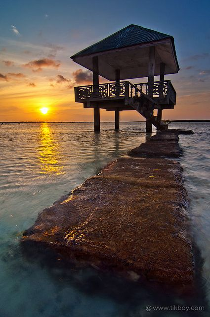 Philippines: Olango Bird Santuary in Cebu!  - I would love to dance while watching the sunset one day