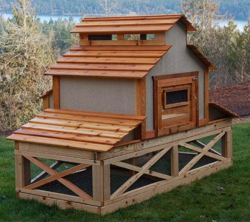 pretty chicken coop