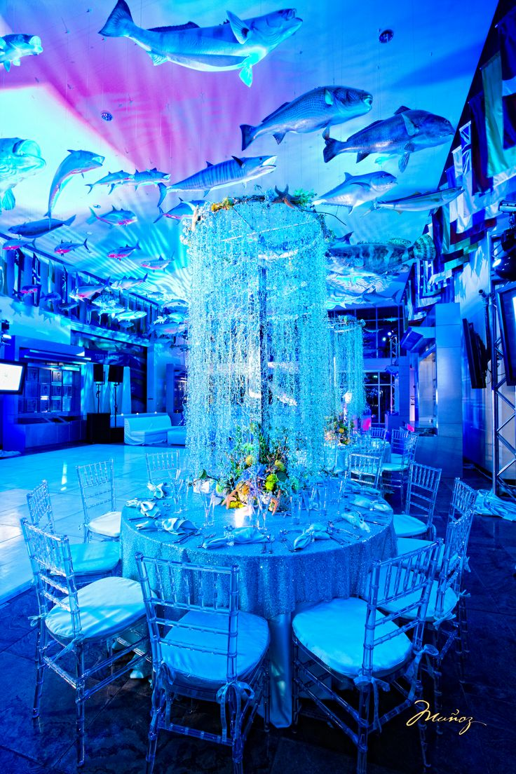 32 Best Bar Bat Mitzvah Theme Under The Water Images On
