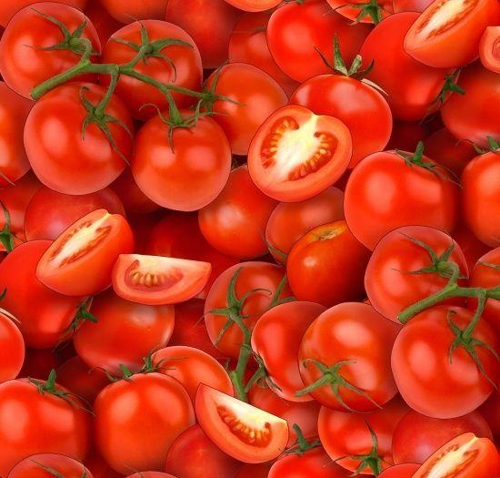 436-red, Food Festival, Fabric Collections, Elizabeth's Studio LLC