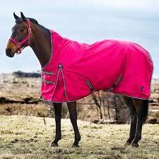 In de regen kan je paard zig lekker buiten uitleven de regendeken neemt de regen op