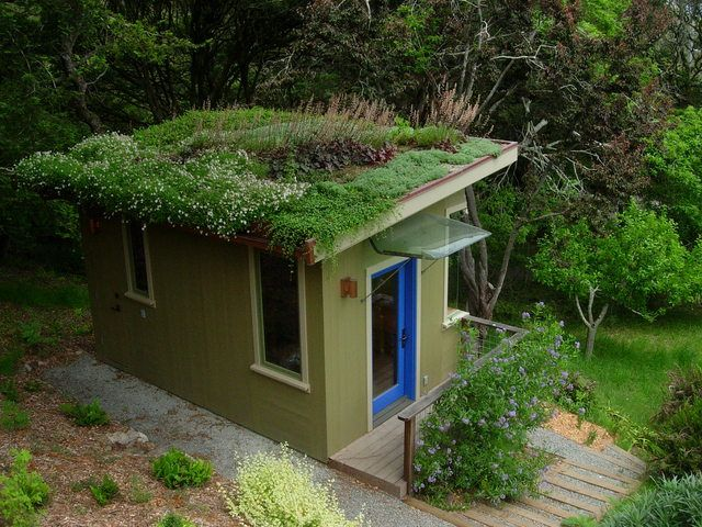 Inverness Living Roof #Tinyhouse #smallhouse #livingroof