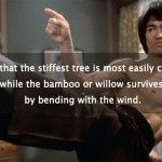 The Wisdom of Bruce Lee: 25 Quotes on Mastery, Martial Arts