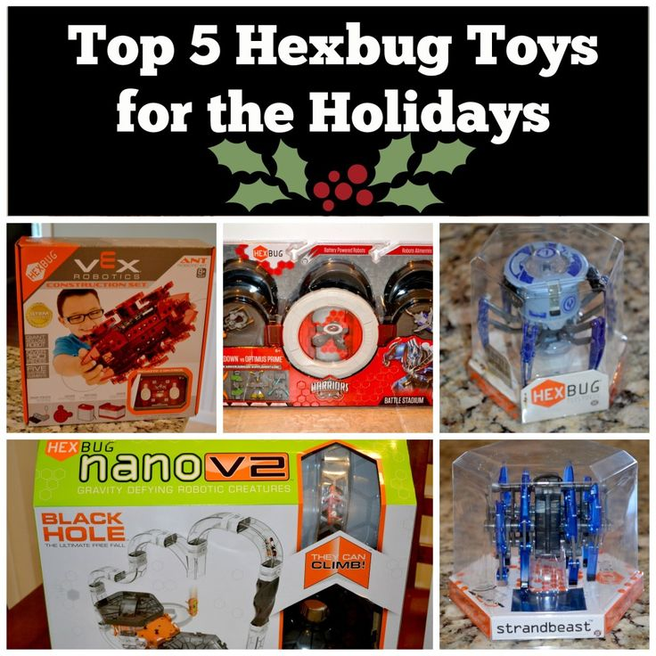 Top 5 Hexbug Toys this Holiday Season