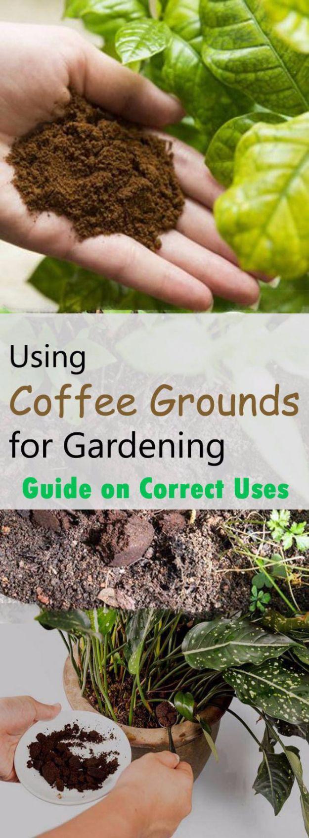 29 DIY Landscaping and Yard Hacks