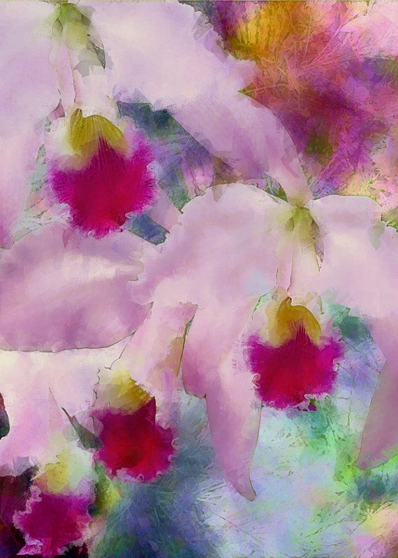 Cattelya Orchids Tropical Fine Art Print by MMBPhotoGraphics
