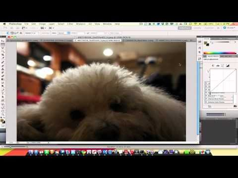 basics of photoshop - color corrections, touch ups, and enhancements