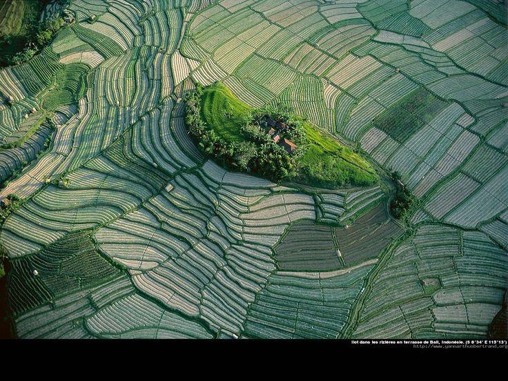 Indonesie_02_jpg.jpg (1600×1200)