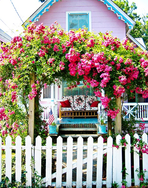 Oak Bluffs l Martha's Vineyard: Pink Cottages, Martha Vineyard, Arbors, Climbing Rose,  Pale, Pink Houses, Pink Rose, Flowers, White Picket Fence