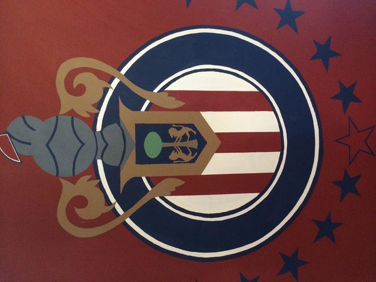 El escudo de mi equipo #1