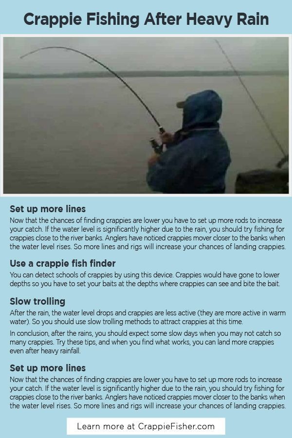 Crappie Fishing After Heavy Rain The Heavy Rains Will Cause The Level Of Rivers Or Lakes To Rise Considerably Higher Than Normal Crappie Fishing Crappie Fish