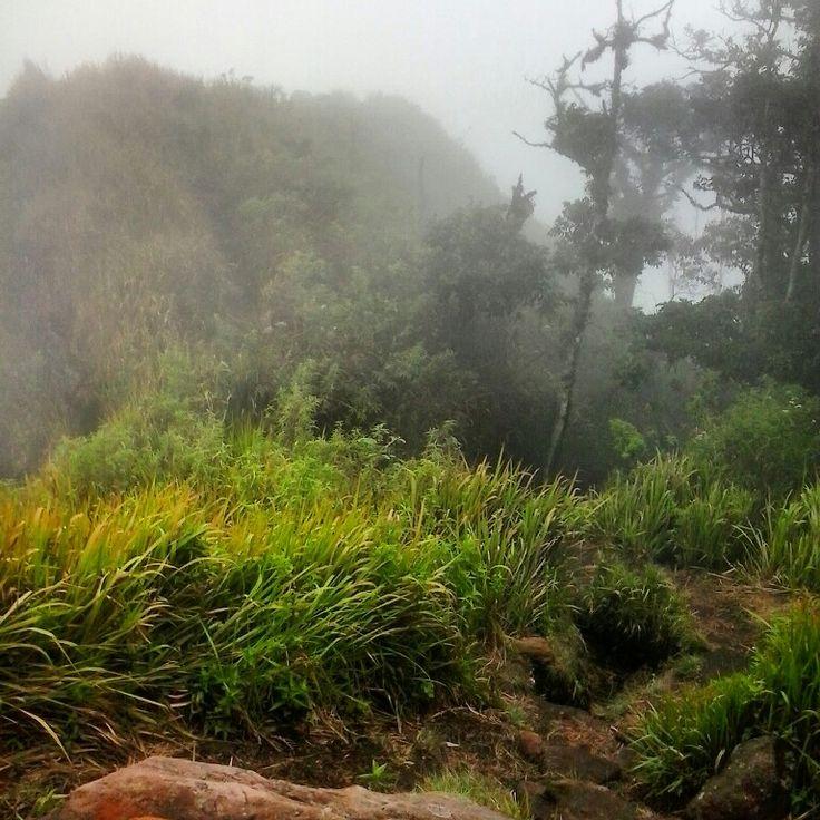 Mount Ungaran by KEPALA-bjb