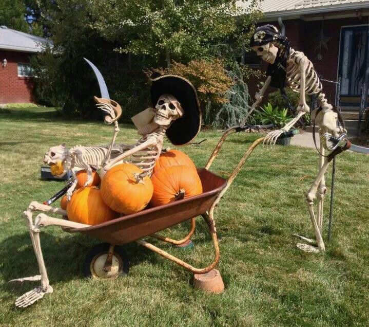 great halloween pirate yard decor damonlmr halloween - Pirate Halloween Decorations