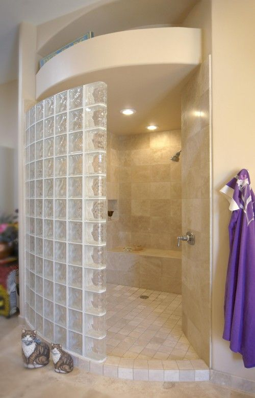 My husband wants to put glass block in the shower.  Just not my thing.