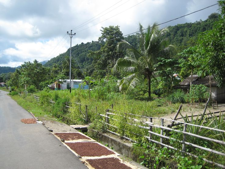 kampong Nuniali