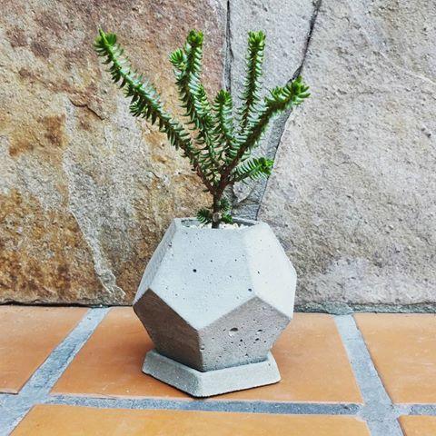 ROCCIA DODE  #roccia #laplata #handmade #concret #beton #hormigon #cement #cemento #maceta #pot #desing #arquitectura #architecture  #deco #jardin #botanica #planta #verde #hechoamano #interiorismo #unico #green #emprendedores #geometria #platonico #chic #esfera #sphere #globe #platonico