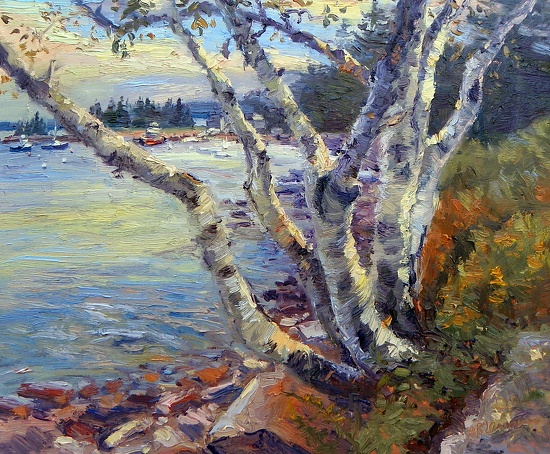 September 11, 2012 A Birch Tree Painting At Seal Harbor!   Plein Aire in Maine