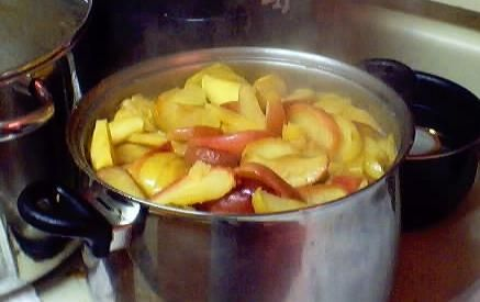 Apple Cider: How to make and bottle your own homemade Apple Cider (directions, recipe, with photos)