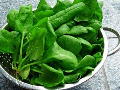 3. Spinach  Medical experts at the at the German Institute of Human Nutrition Potsdam-Rehbruecke recommend the best way to protect your pancreas and lower the risk of pancreatic cancer is to consume a diet high in spinach, or more specifically, leafy green veggies (i.e., kale, spinach, mustard greens, and Swiss chard) with elevated levels of B vitamins and iron.