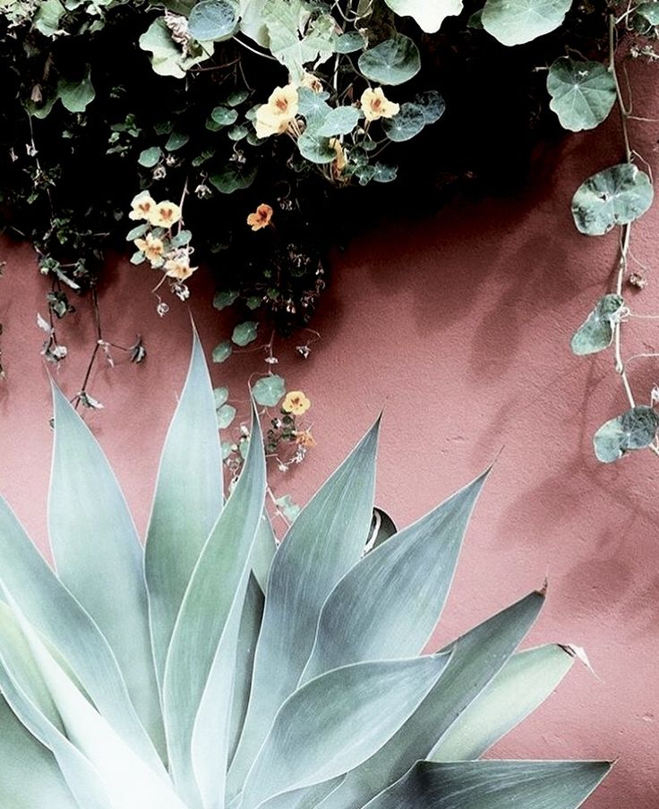 This Pin was discovered by Dana Rich. Discover (and save!) your own Pins on Pinterest.